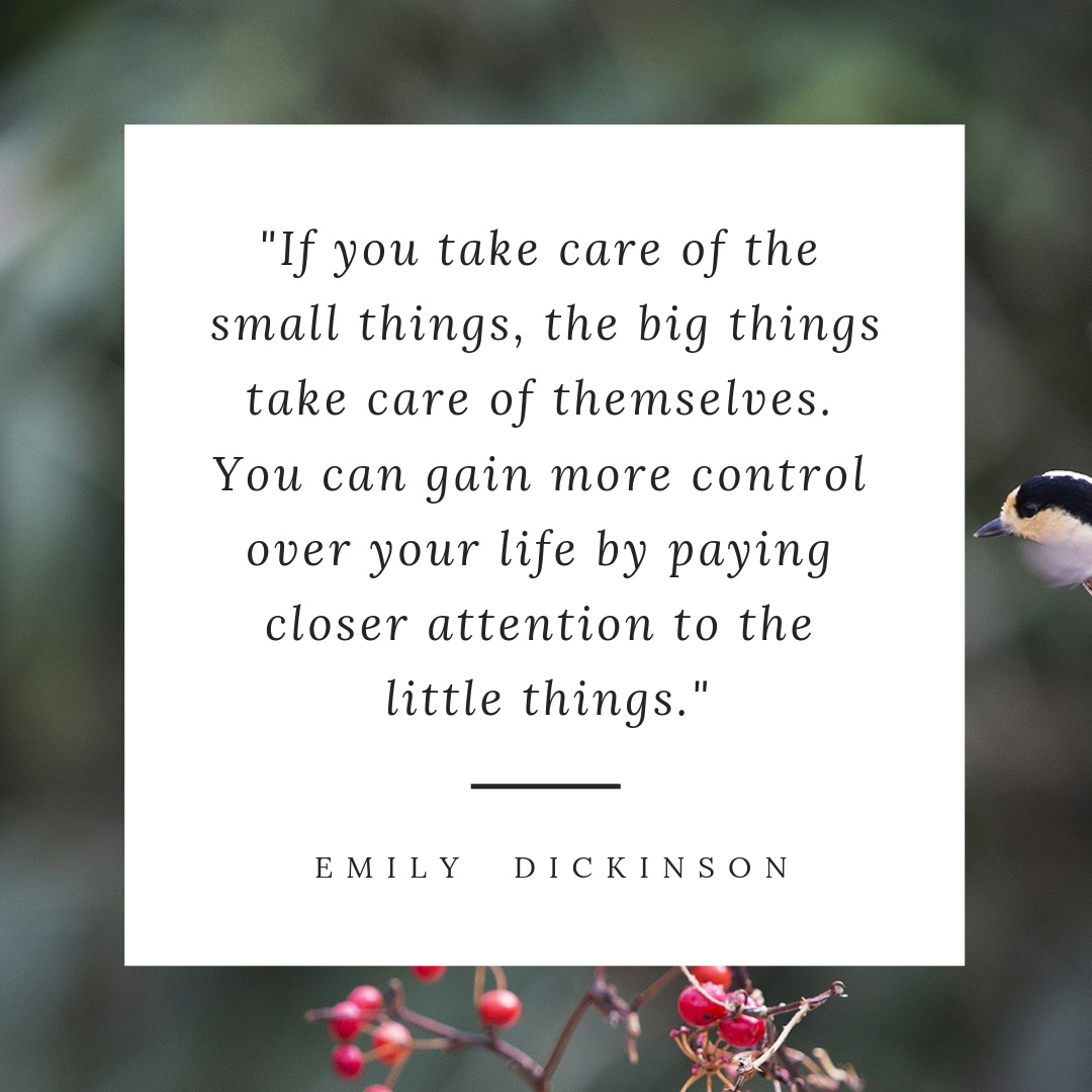 Emily-Dickinson---small-things