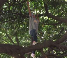 2019-07-18-Resilience_Definition_Treeclimb