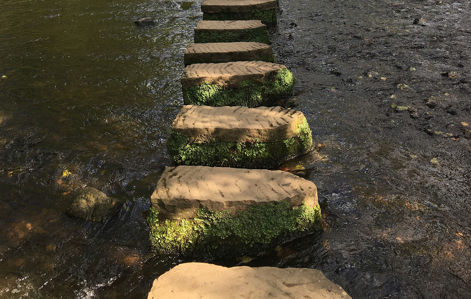 Resilient Meaning Stones